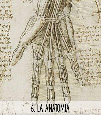 Leonardo da Vinci y sus aportaciones a la humanidad